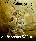 The Paleo Ring's PreviousWebsite